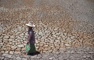 un enfant qui marche sur de la terre sèche