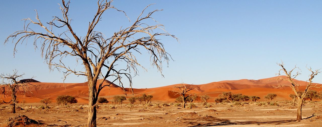 MAROC - Le manque d'eau menace le Maghreb