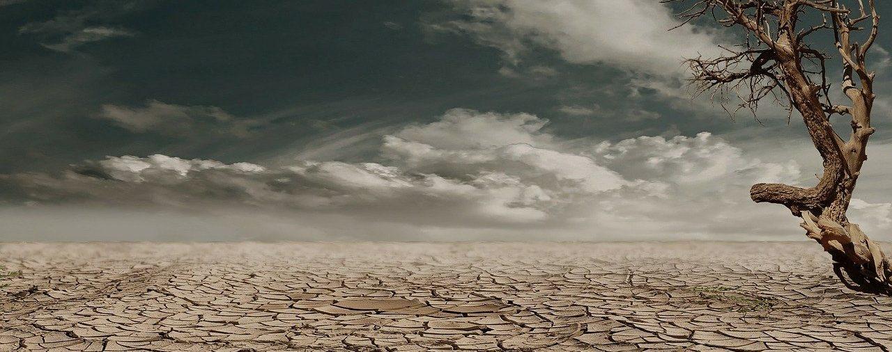 """Tribune du Monde """"Sans une action décisive, le manque chronique d'eau ne trouvera pas de solution"""""""